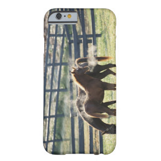Vermont, USA Barely There iPhone 6 Case