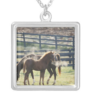 Vermont, USA Silver Plated Necklace