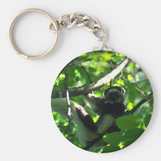 Verreaux Sifaka male in tree Basic Round Button Key Ring