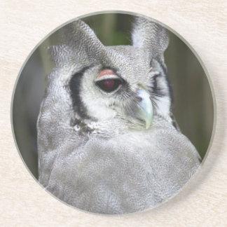 Verreaux's Eagle-Owl (Bubo Lacteus), Gauteng Coaster