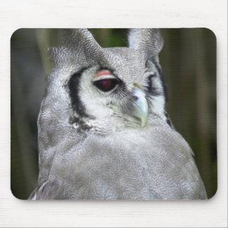 Verreaux's Eagle-Owl (Bubo Lacteus), Gauteng Mouse Mat