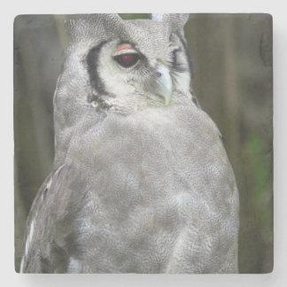 Verreaux's Eagle-Owl (Bubo Lacteus), Gauteng Stone Coaster