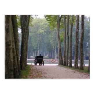 Versailles buggy 1 postcard