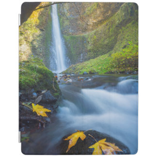 Vertical panorama view of Tunnel Falls iPad Cover
