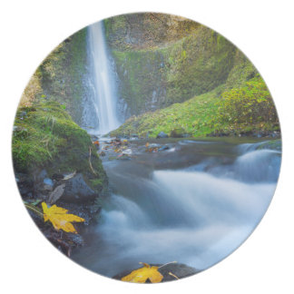 Vertical panorama view of Tunnel Falls Plate