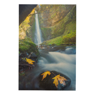 Vertical panorama view of Tunnel Falls Wood Wall Decor