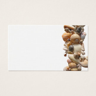 Vertical Shell Border Place Cards