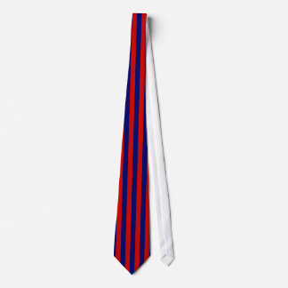 Vertical Striped Blue and Red Tie