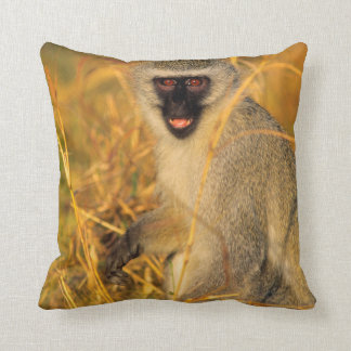 Vervet Monkey (Chlorocebus Pygerythrus) Cushion
