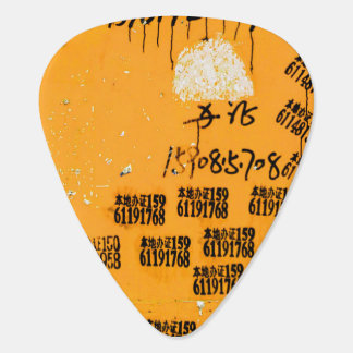 Very Cool Unique Exotic Guitar Pick