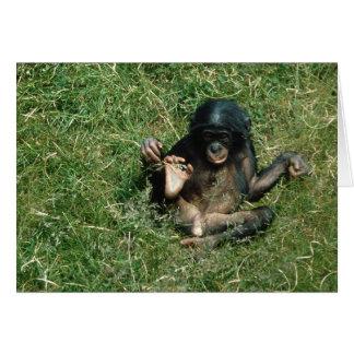 Very Cute Baby Bonobo Ape Greeting Card