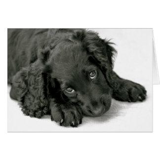 Very Cute Puppy Note Card