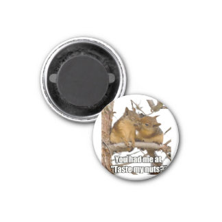 Very Funny Squirrel Magnet
