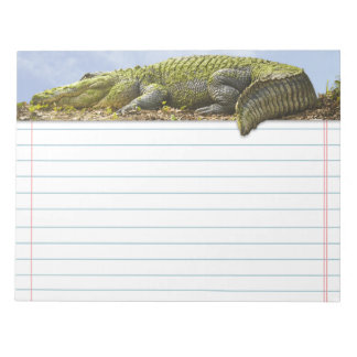 Very Large Gator with Tail Out of Bounds Note Pads