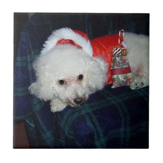 """Very Merry Bichon"" Christmas Tile"
