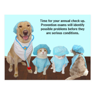 Vet Check Up Reminder Postcard