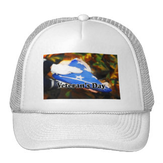 Veteran's Day Mesh Hats