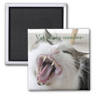 Veterinarian Phone Number Magnet