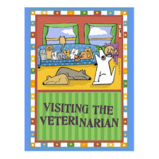 Veterinarian Thank-You Card Postcard