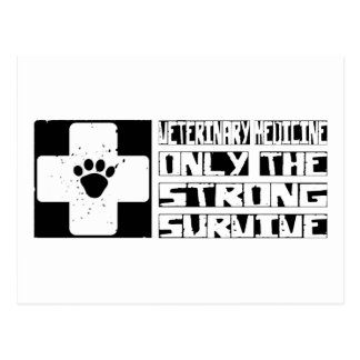 Veterinary Medicine Survive Postcard