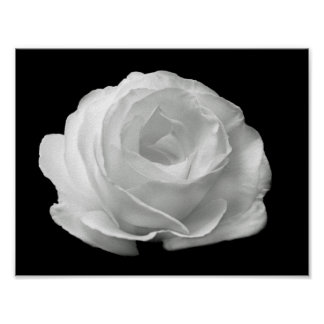 vibrant black and white floral photo poster