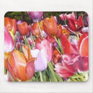Vibrant Chicago Tulips Mousepad