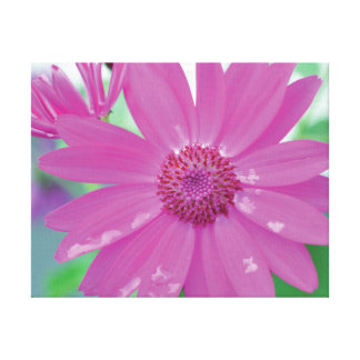 Vibrant close-up photo pink flower on green canvas print