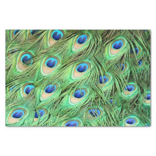 Vibrant Exotic Peacock Feathers Tissue Paper