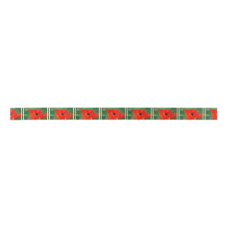Vibrant Orange Poppy Satin Ribbon
