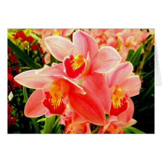 Vibrant orchid notecard. card