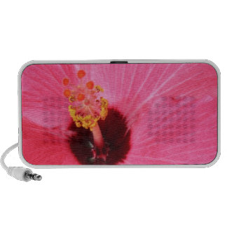 Vibrant Pink Tropical Hibiscus Portable Speakers