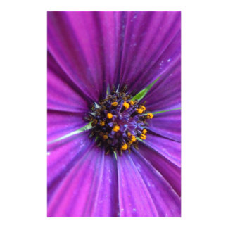 Vibrant Purple Daisy Stationery