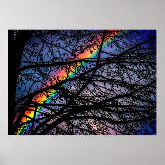 Vibrant Rainbow | Dark Spring Tree | Natural Poster