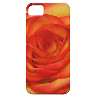 Vibrant Red and Peach Rose Macro Photo Barely There iPhone 5 Case