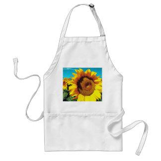 Vibrant Sunflowers against blue sky Standard Apron