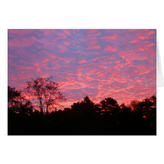 Vibrantly Pink Sunrise Greeting Card
