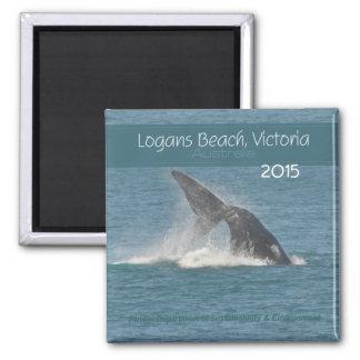 Victoria Australia Whale Magnet Change Year