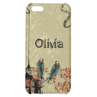Victoria Bird Cage Vintage Damask iPhone Case iPhone 5C Cover