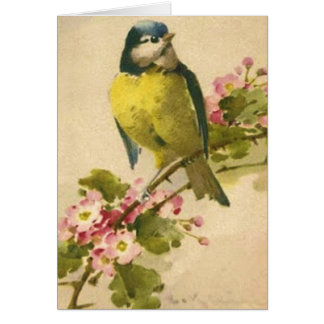 Victorian Bird Illustration Card