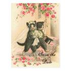 Victorian Kitten Wedding Save the Date Postcard