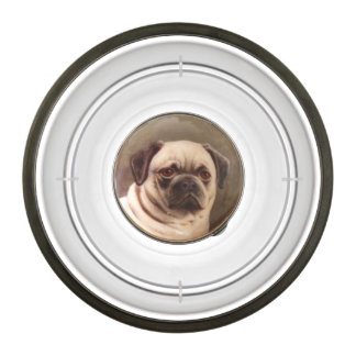 VICTORIAN MINIATURE DOG PORTRAITS / PUG