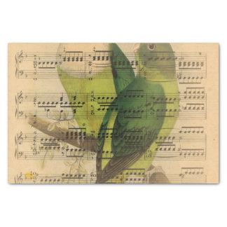 Victorian Music Sheet Watercolor Bird Wallpaper