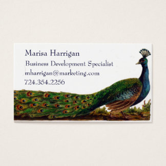 Victorian Peacock Business Cards Template