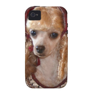 Victorian Poodle Love Dog Pose Vibe iPhone 4 Cases