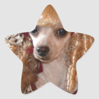 Victorian Poodle Love Dog Pose Star Sticker
