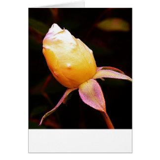 Victorian Rose Card
