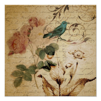 Victorian Rose Paris Scripts french bird botanical Poster