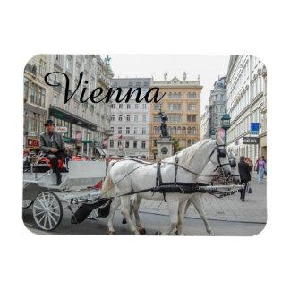 Vienna Austria Rectangular Photo Magnet