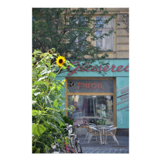Vienna Sunflower Scene Photo Print
