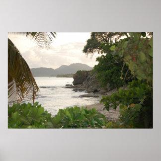Vieques Puerto Rico Print